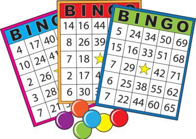 Bingo-graphic21